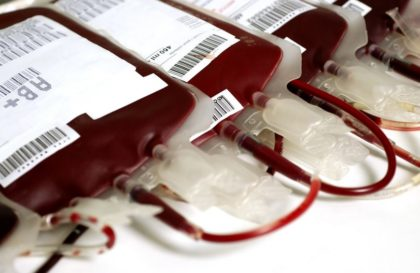 sangue-reproducao-2