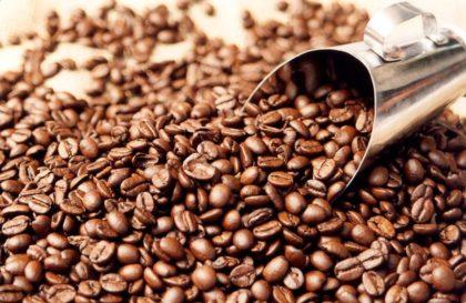 producao-cafe-reproducao