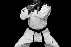 taekwondo-reproducao