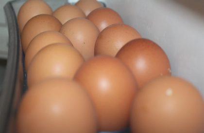 ovos-agricultura-valedoiguacu
