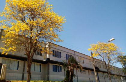 escola-bituruna-indigena