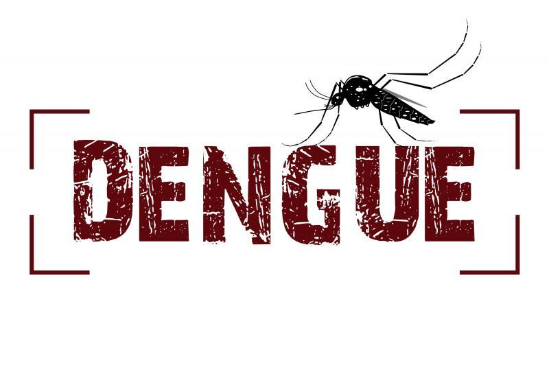 dengue-saude-reproducao