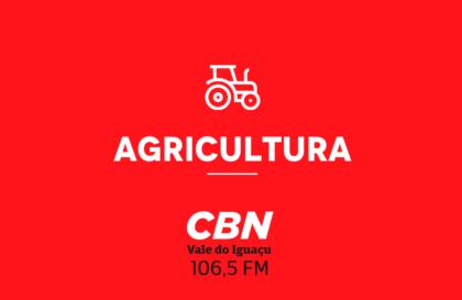 agricultura_cbn