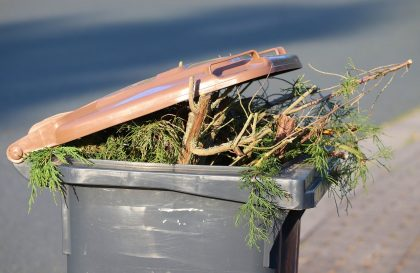 lixo-reproducao