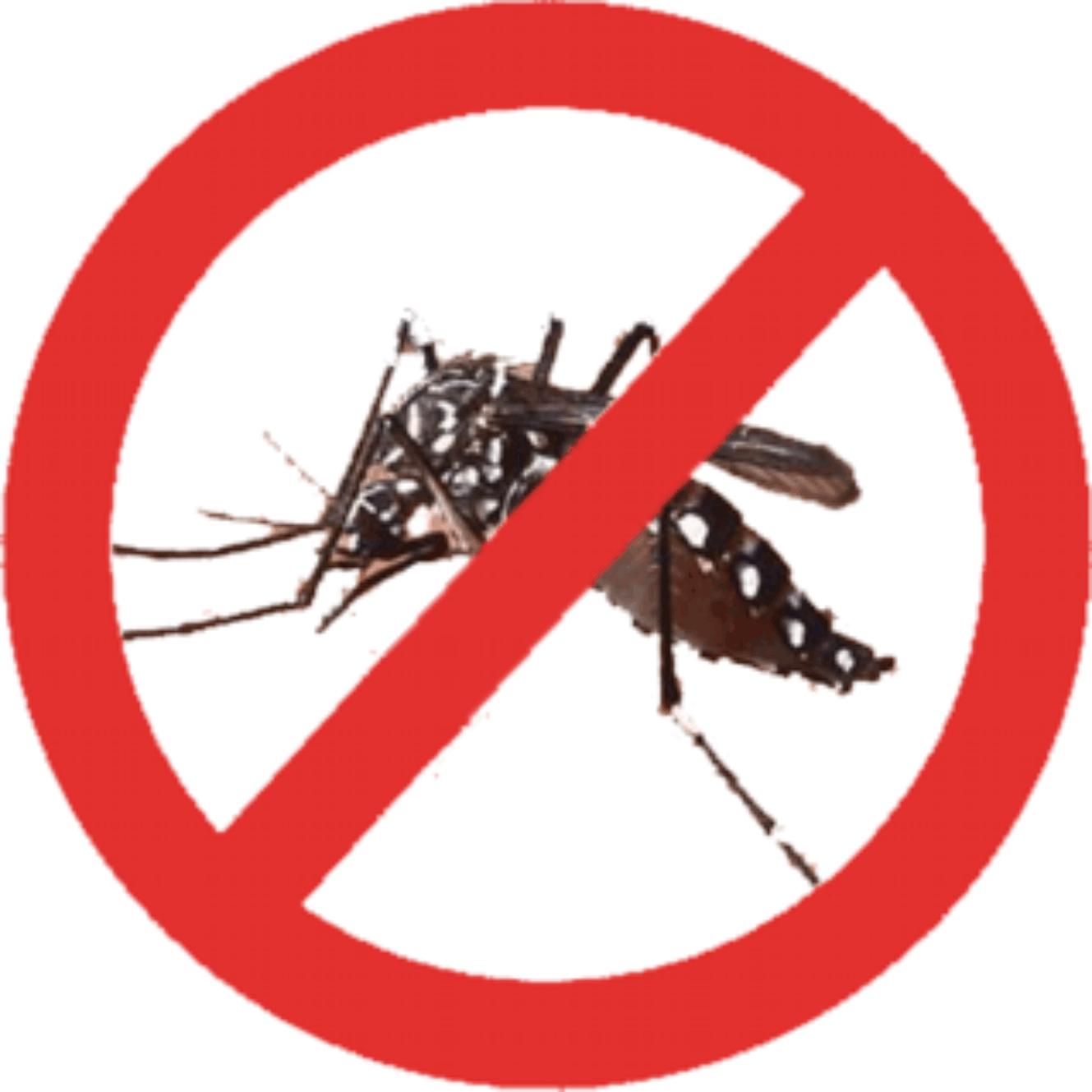 Comunicado sobre a Dengue