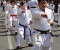 desfile-7desetembro-valedoiguacu-0709XX353X