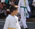 desfile-7desetembro-valedoiguacu-0709XX401X