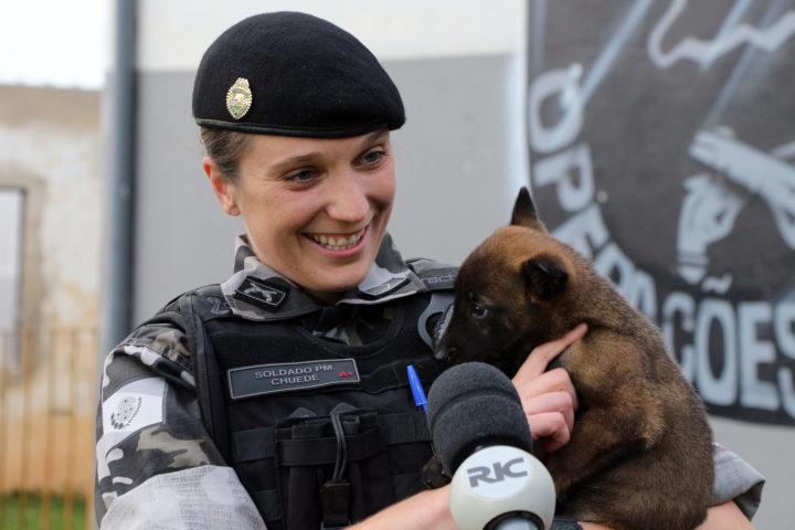 A soldado Angélica Aparecida Chuede é a primeira mulher a fazer parte da Companhia de Operações com Cães (COC) do Batalhão de Operações Especiais (BOPE), em 47 anos de criação da subunidade (Foto: Soldado Amanda Morais).