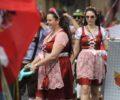 20190810-desfile-etnias-cultura (16)