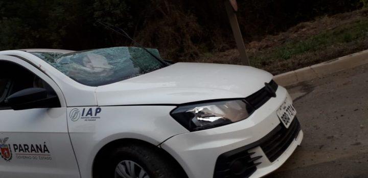 acidente-transbrasiliana-br153 (2)
