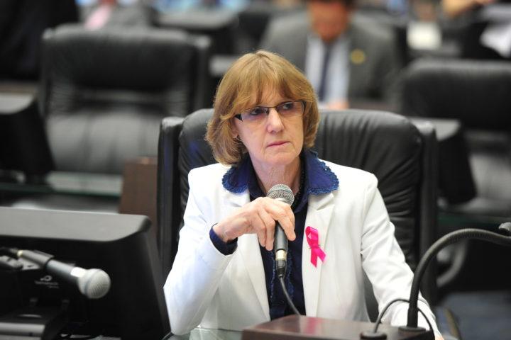 Deputada estadual Luciana Rafagnin (PT) (Foto: Divulgação/Assessoria).