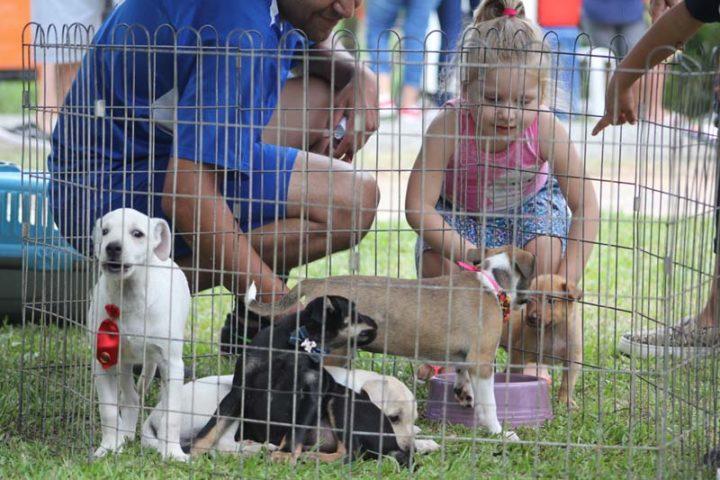 20200217-festivaldeverao-esporte-uniaodavitoria (44)