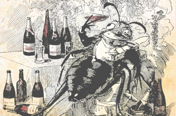 vinho_Foto Edward Linley Sambourne, cartunista inglês 1844-1910